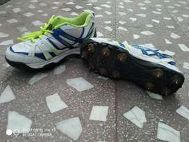 Cricket metal spike shoes