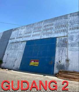 Dijual 2 Gudang Jejer Tanjung Sari Siap Pakai Best Area