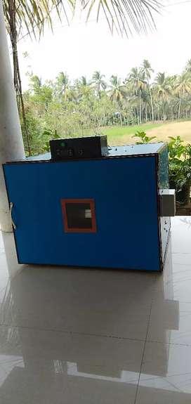 Portable tape egg incubator