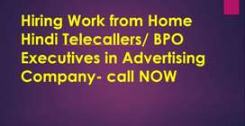 Hindi Telecaller/Domestic BPO-Work from Home jobs -Full Time/Part Time