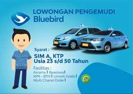 Loker Driver Bluebird Online