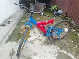 Sepeda wim cycle murah