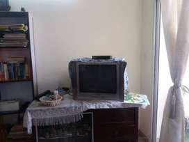 Wooden table with showcase and TV