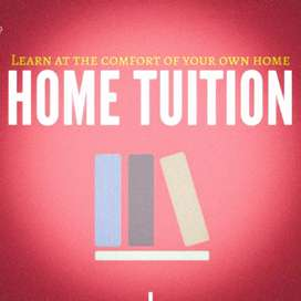 private lady home tutor for class 2.