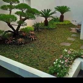 Tukang taman hijau minimalis/Pagelaran