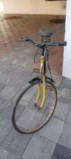 Bsl running cycle army, google pay phone pay wale sampark na kare