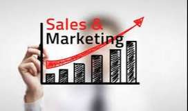 sales and marketing jobs