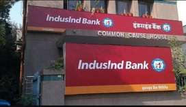 Marketing  Executive For Induslnd bank fresh graduates salary 12k
