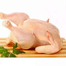 Ayam fresh dan frozen