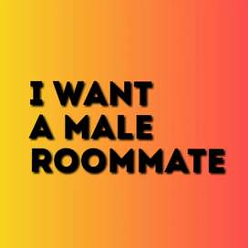 I want a male roommate...