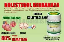 Herbagyn herbal untuk kolesterol & darah kental