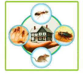 A&S Services Fumigation Service mosquitoes, cockroaches&rodent control