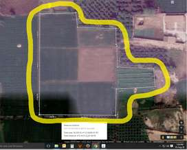 Land for Sale (Commercial, Agriculture, Industrial, & Residential)