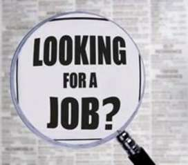 Are you looking for job in KPO