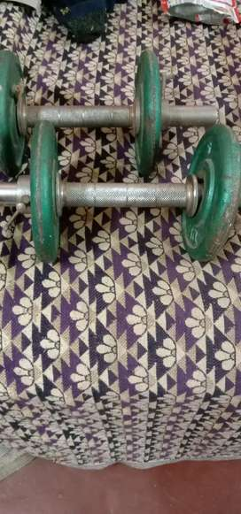 12 kg dumbbells with adding options