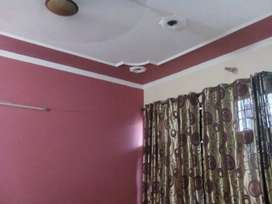 #1147 Sector 21 Panchkula- First floor for Rent