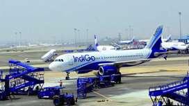 Urgent vacancies in Indigo Airlines for ground staff