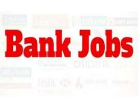 Bank Job Graduates Male Female Req In Chandigarh Location  Sitting Job