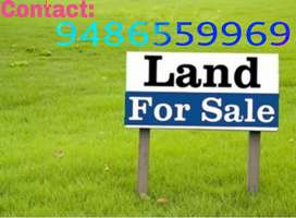 25 Cent Land Sale near to Syed Ammal CBSE School