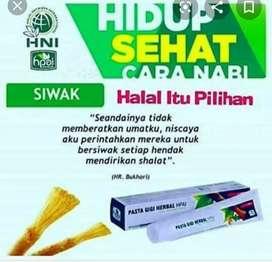 Pgh herbal alami