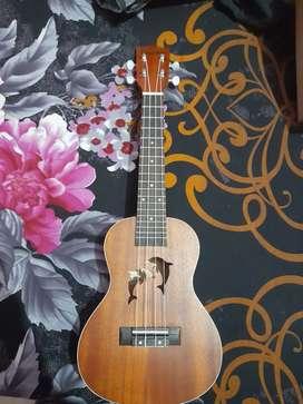 Dolphin ukulele