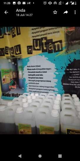 Madu Hutan Asli netto 950g bersertifikasi Dinkes PIRT