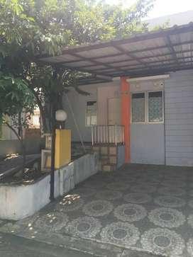 Kampung/Kampoeng Semawis semarang