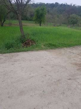 Plain land On the road that road link with mirpur khoirata main road