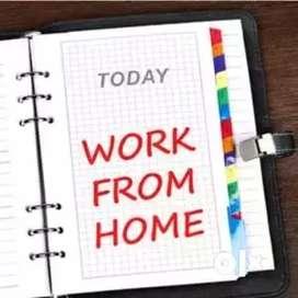 Offline Typing Work Data Entry Home Based Job