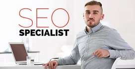 SEO Expert required