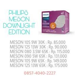 Philips Meson Downlight Series