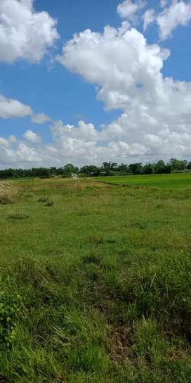 Residential plot in a very cheap price near Hanspal,atala
