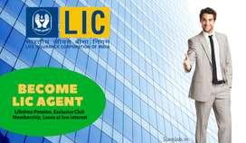 LIC Sales Executive