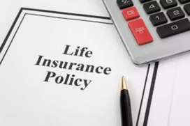 Muvatupuzha/Degree pass is must/Field sales job/Life Insurance