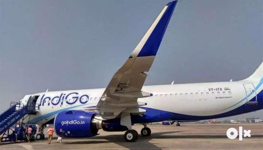 Indigo Airlines Hiring- Airport Job- Male / Female Fresher to Exper 0