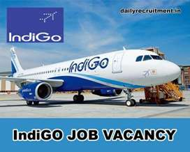 We are urgently hiring for Ticketing Executive in Chandigarh Airport