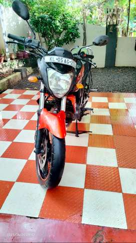 Fzs 2013 For sale