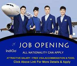 Recruitment In  INDIGO AIRLINES Now Opened For All India Candidates.