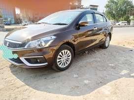 Ciaz Delta Petrol Hybrid with New shape