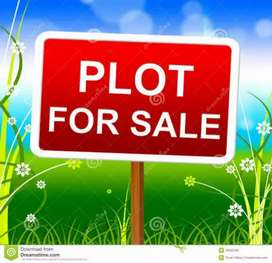 4. 5 marla Plot for sale in shadman town wah cantt