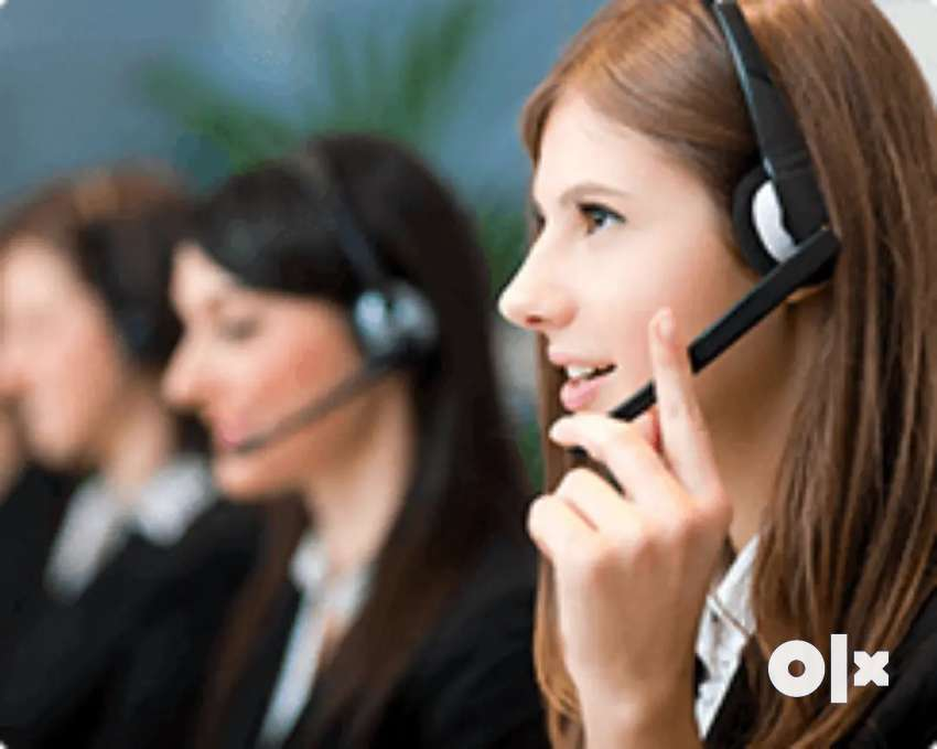 Need male and Female Telecaller to generate the orders