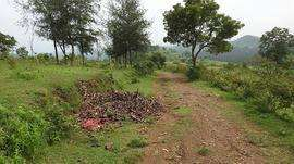 11 acre agriculture land for sale in attapadi