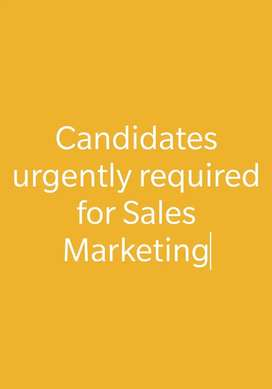 Candidates urgently required for Sales Marketing