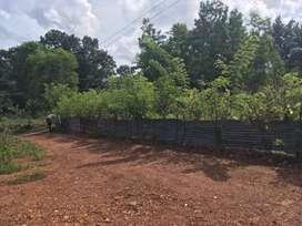 Kallara area