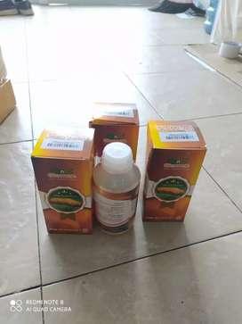 Qnc Jelly Gamat 10 botol