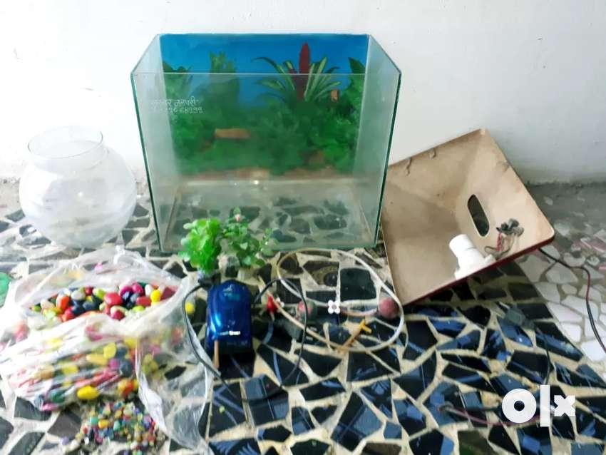AQUARIUM OR FISH TANK 0