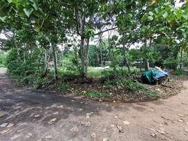 kochinproperties plot for sale in