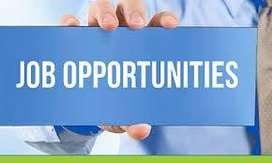 hiring collection executives for banking process