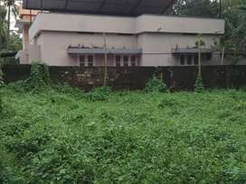 3 cent residential plot behind medical centre palarivattom