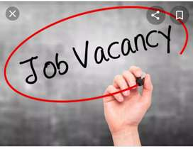 Job requirements for girls boys arjent